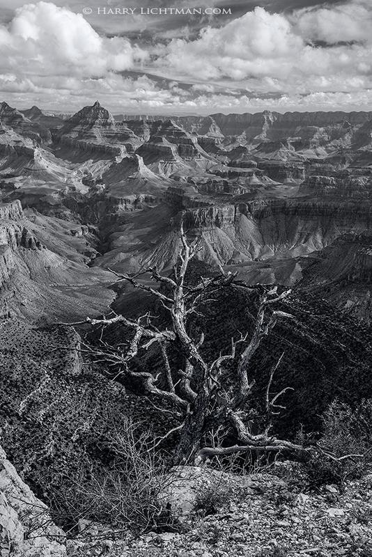 The Edge - Grand Canyon - South Rim