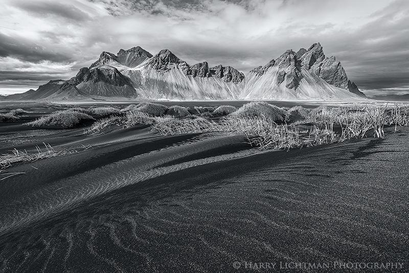 Sand Serpents - Monochrome - Black & White