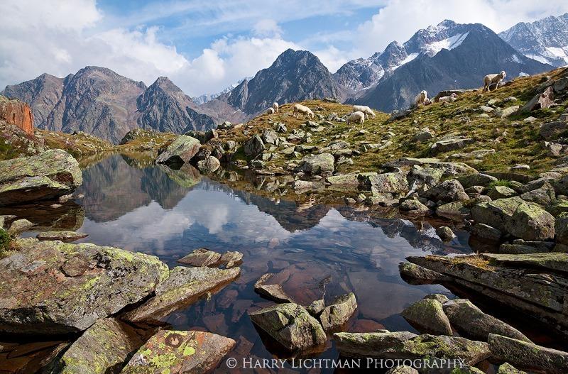 Classic Austrian Landscape - Austria - The Wild Landscape