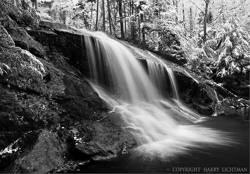 Winter Dusting - Thomson Falls - Black & White