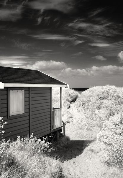 To the Sea - Norfolk Coast