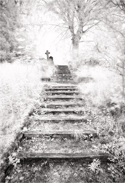 Stairway to Heaven - Norwich & Norfolk
