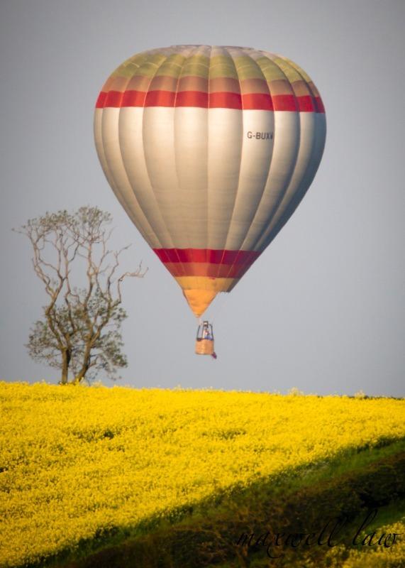 Balloon - Travels