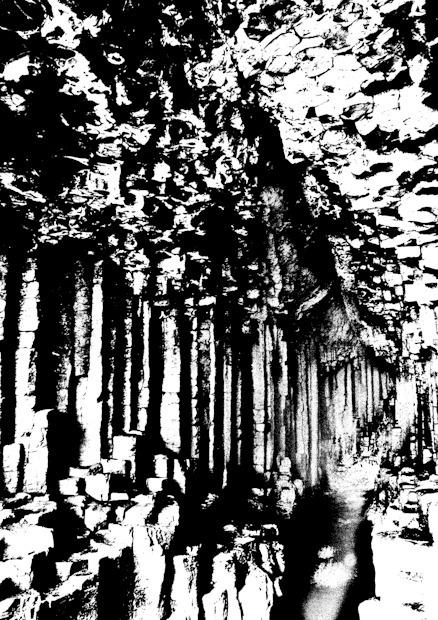 Fingals cave 2-2277 - Plants / Flora