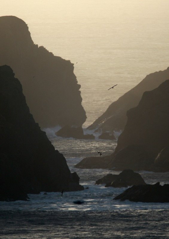 unst Shetland - Beaches / Coast