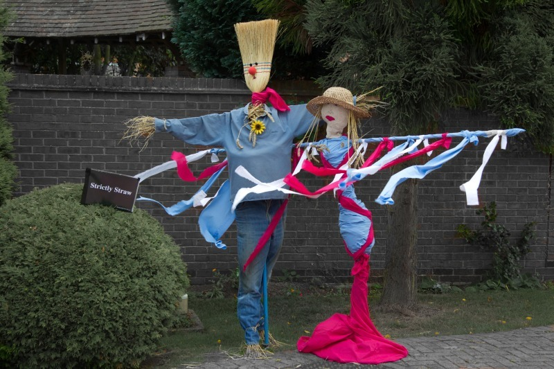 Scarecrow 3-7857 - Photojournal