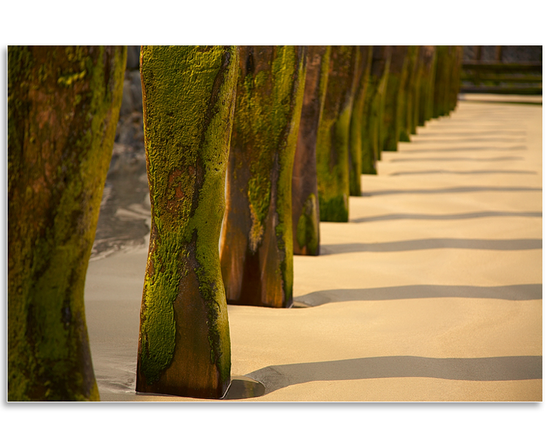 06061678 - Vazon Bay groynes - Guernsey Landscapes - Visions Gallery