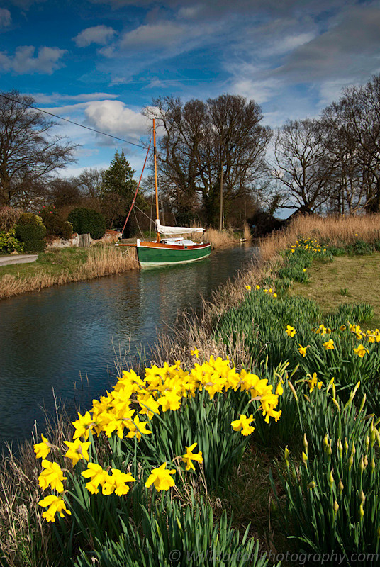 Springtime at Barton Broad on the Norfolk Broads
