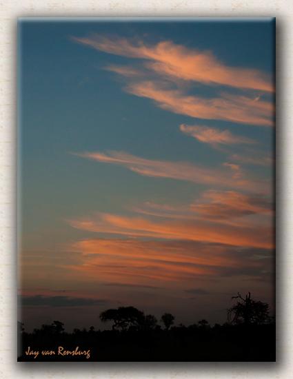 African Summer Sunset - African Sunset