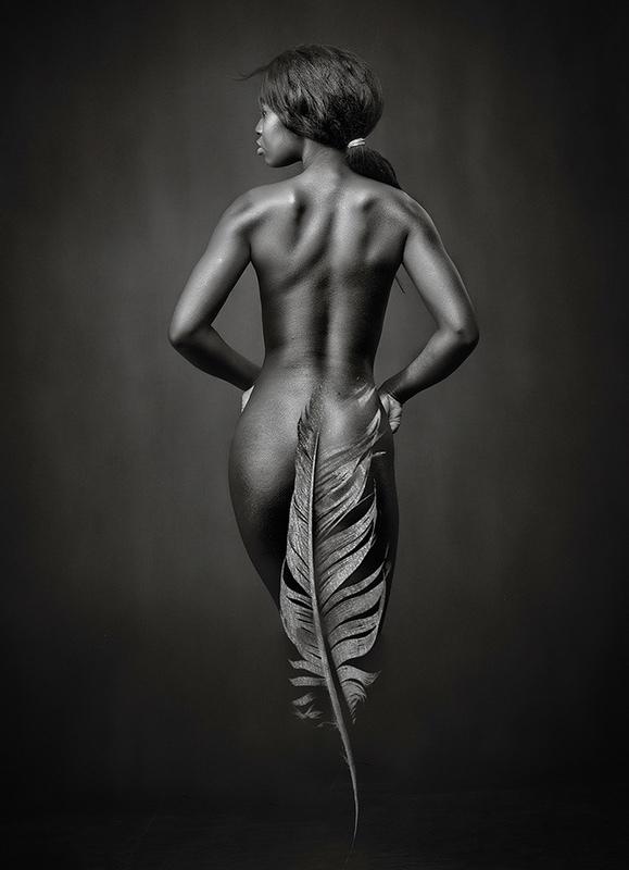 Ebony Feather - MONO