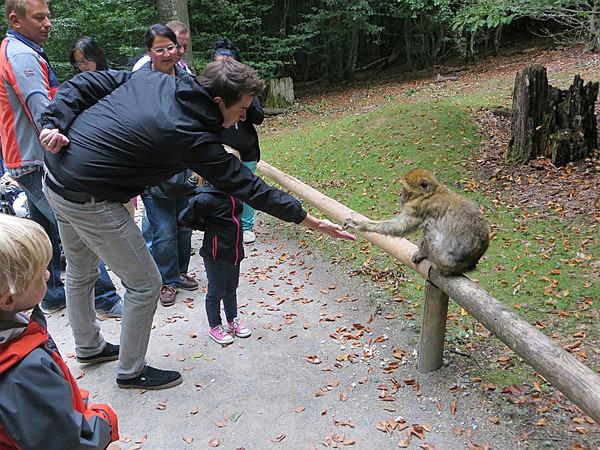 Jon feeding a monkey - Our Travels