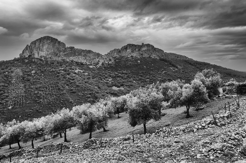 Castelle Extremadura. - New Work