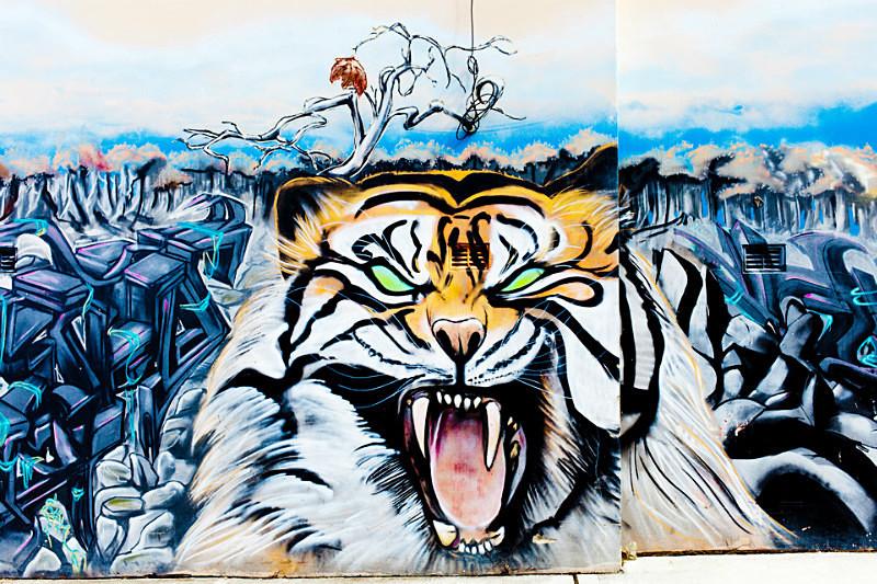 Graffiti-36 FB - STREET ART & EVENTS