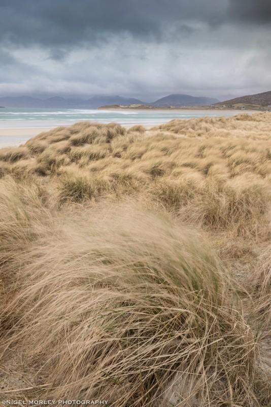 Hebridean Sand Dunes - Limited Edition: Landscapes