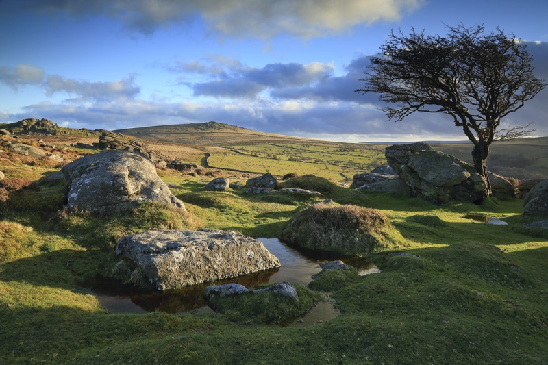 Holwell Tor