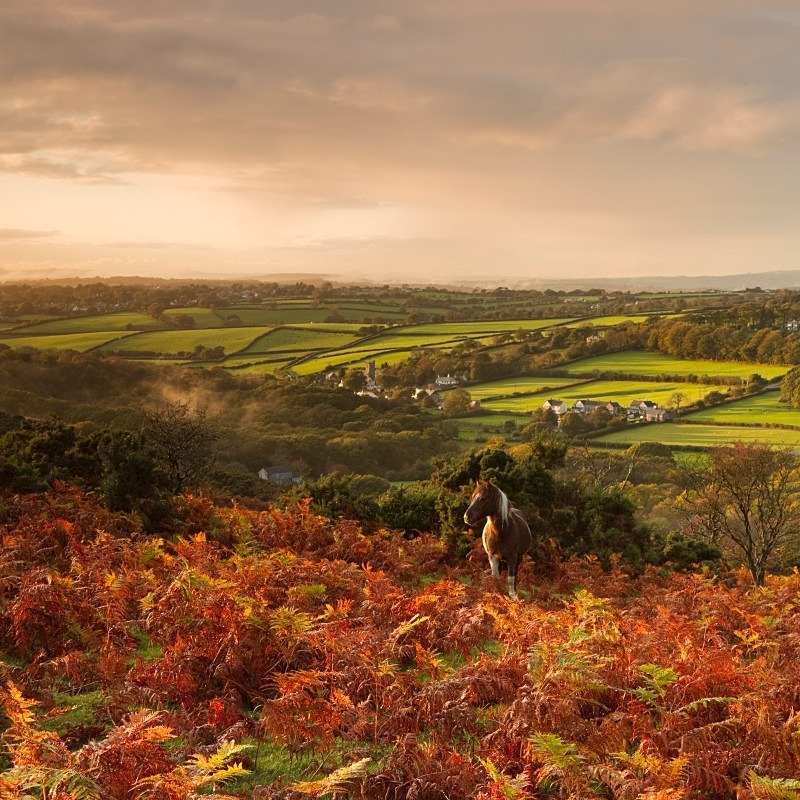 Meavy Dartmoor