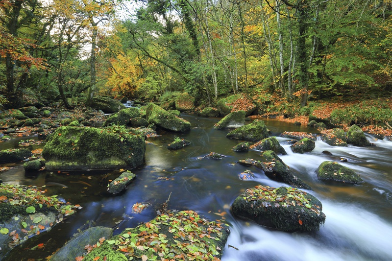 Colours of the Teign - Dartmoor Landscapes Prints
