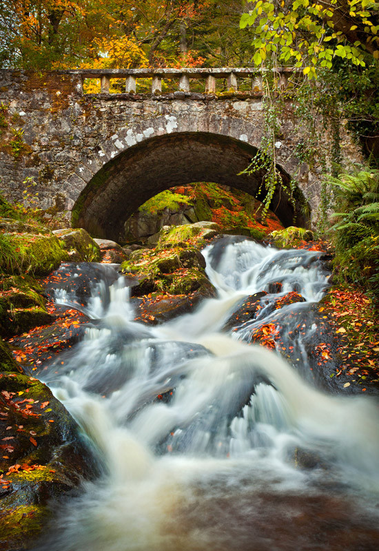Autumn at Cloughleagh - Co Wicklow