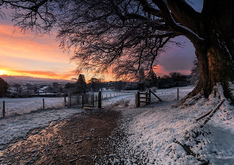 Winter Sunrise in Derrymore - Co Armagh