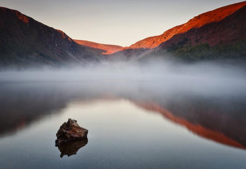 Misty Morning - Co Wicklow