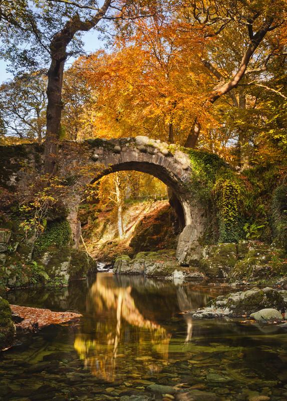 Autumn Light at Foleys Bridge - Co Down
