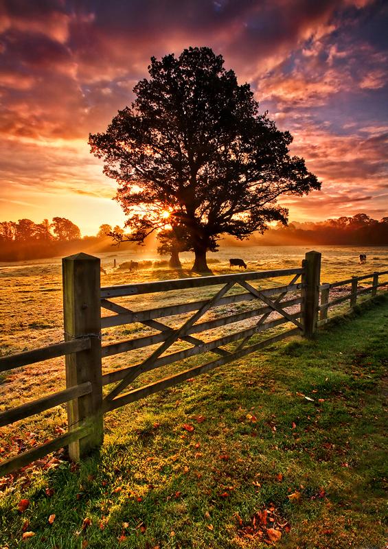 Frosty Autumn Sunrise - Co Armagh