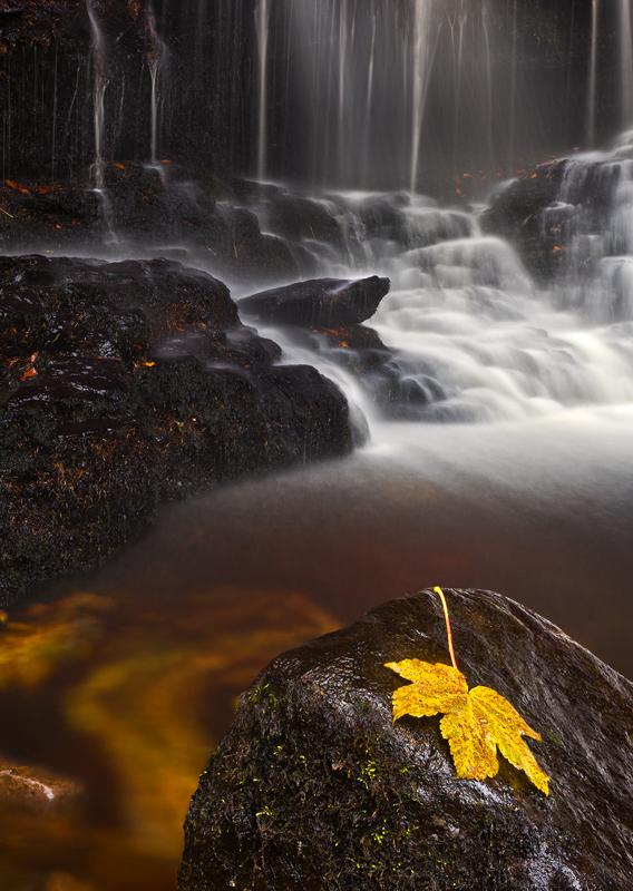 Glenariff Autumn - Co Antrim