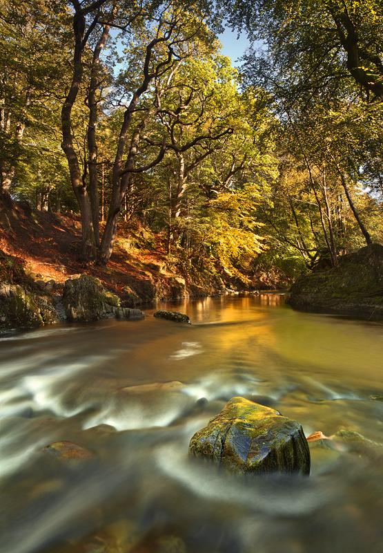 Golden Flow - Co Down