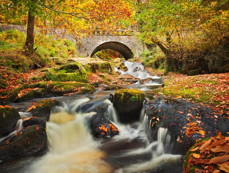 Under The Bridge - Co Wicklow