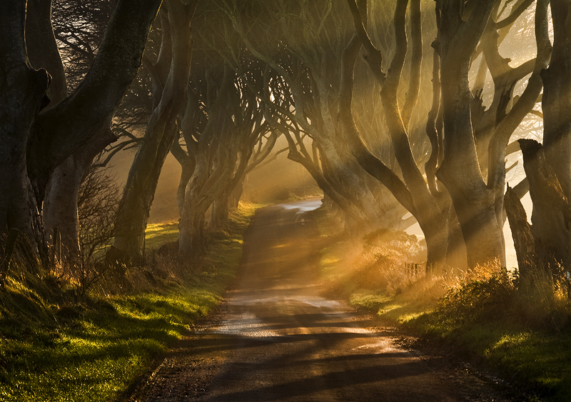 The Road Goes Ever On - Co Antrim