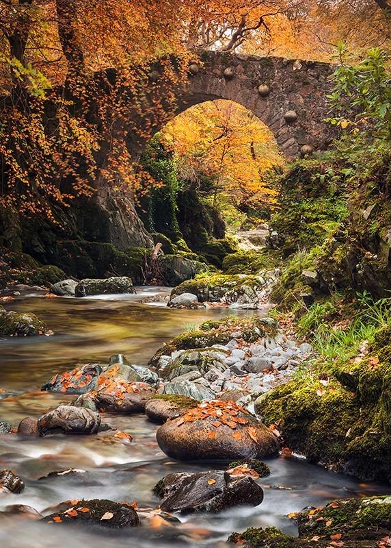 Autumn at Foleys Bridge - Co Down