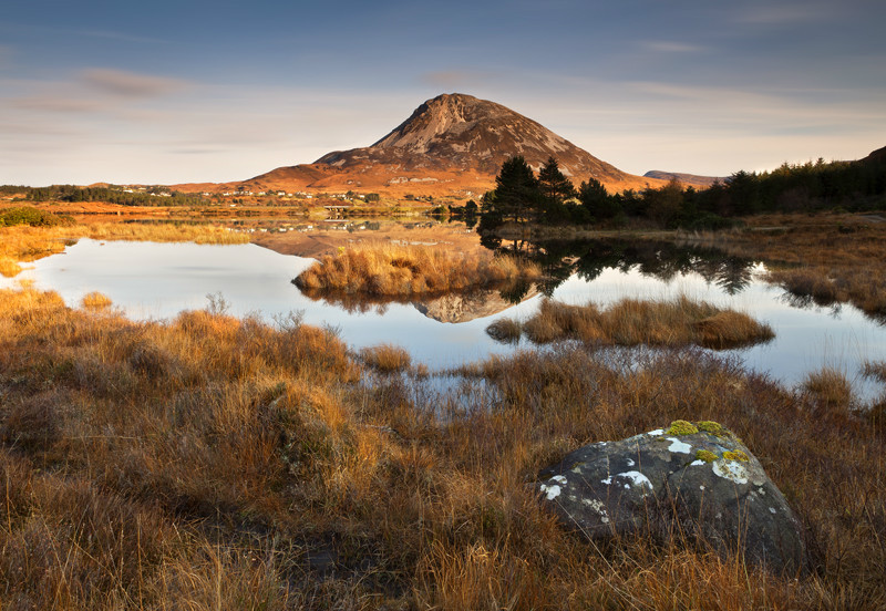 Errigal View - Co Donegal