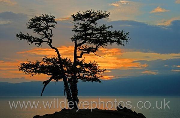 Baikal Sunset - Landscape & Life