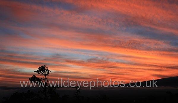 Kilauea Sunset - Landscape & Life