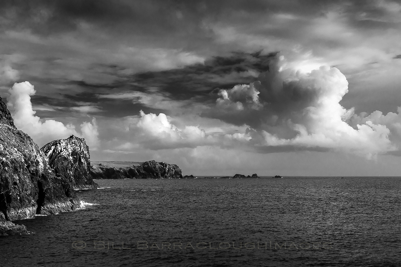 Lizard Point - Latest Additions