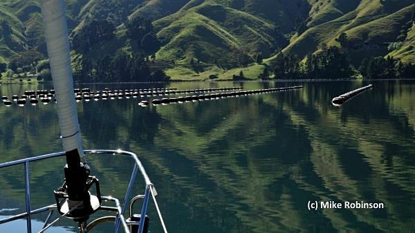 Mussel Farm_6_Cissy Pelorus - South Island, New Zealand