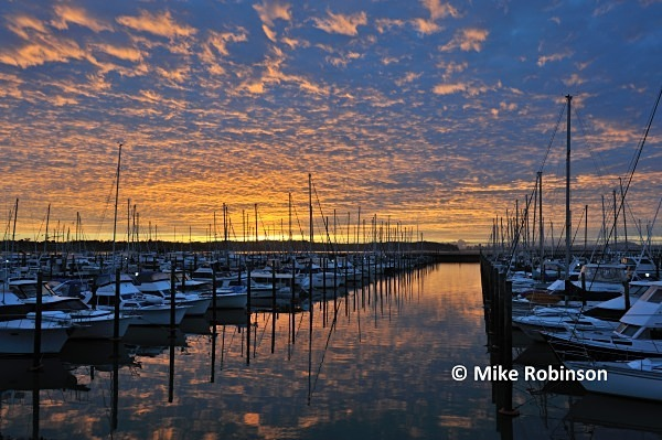 Westpark marina_5_dawn Auckland - North Island, New Zealand