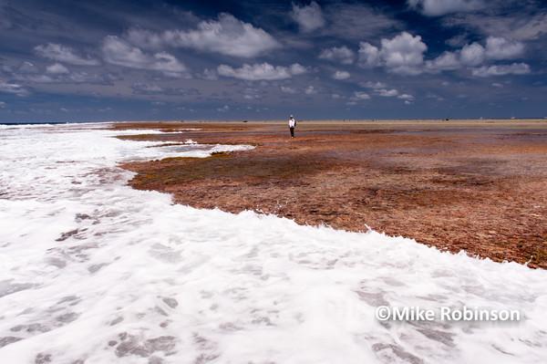 reef walk_463 with polariser - Pacific Memories