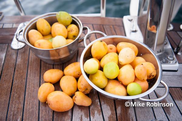 Anaho Bay_308 mangos - Pacific Memories