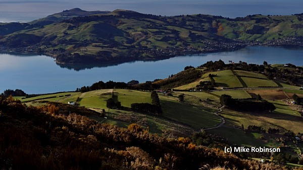 Otago Pen GVs_172_from Mt Cargill - South Island, New Zealand
