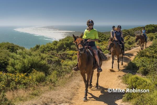 Pillar Point_1015_horse riders - South Island, New Zealand