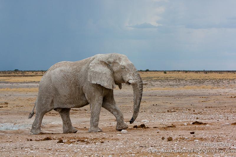 Stone elephant under stormy skies