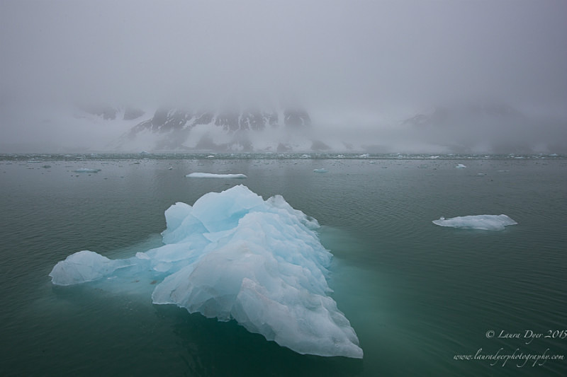 Icy in Fjord - Svalbard