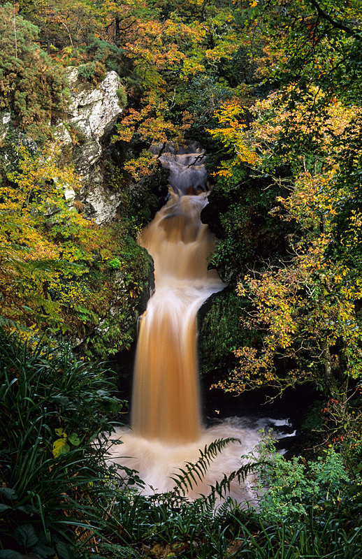 Ness Woods waterfall (S095) - County Derry