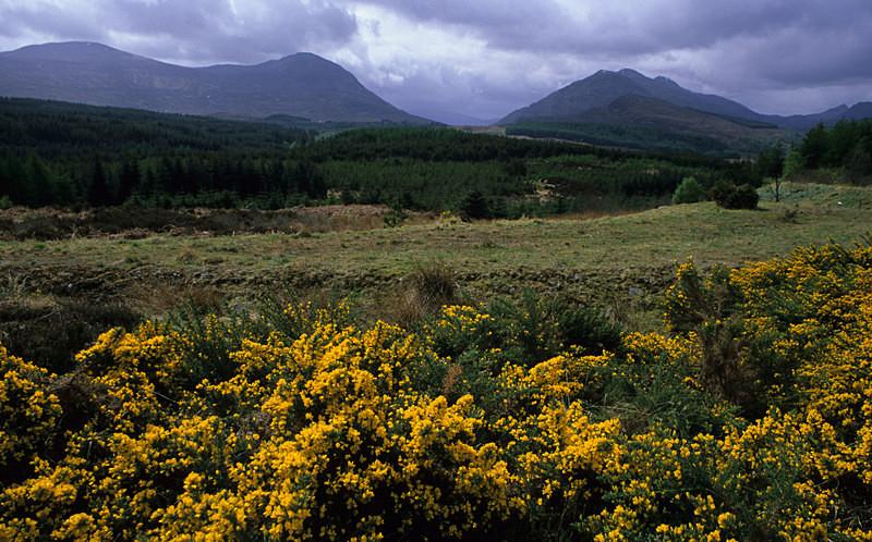 Grey Corries - Highlands
