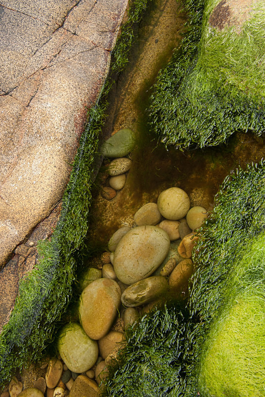 Inishowen Granite 3 (06081566) - Inishowen Grantite
