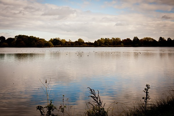 Undeveloped Lake - The Cotswolds