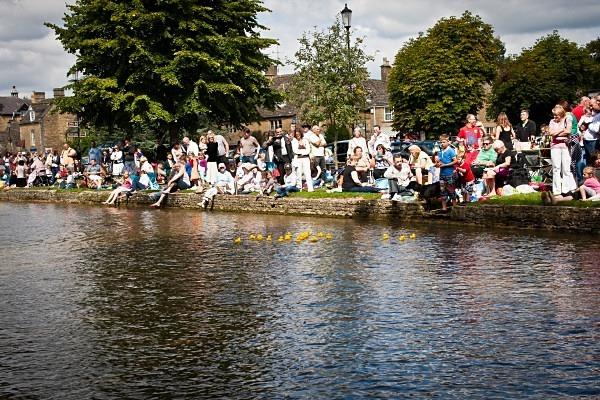 Bourton Duck Race - The Cotswolds