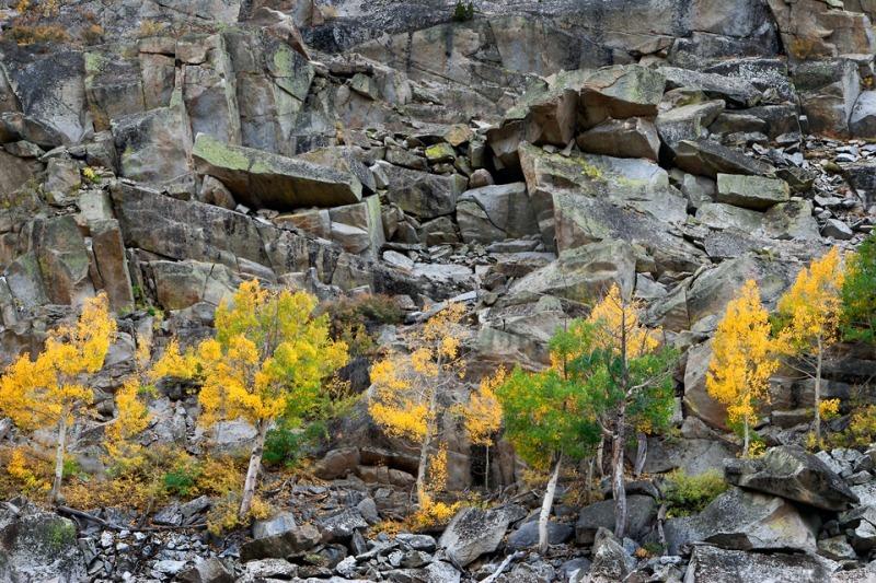 Sierra Nevada - Sierra Nevada