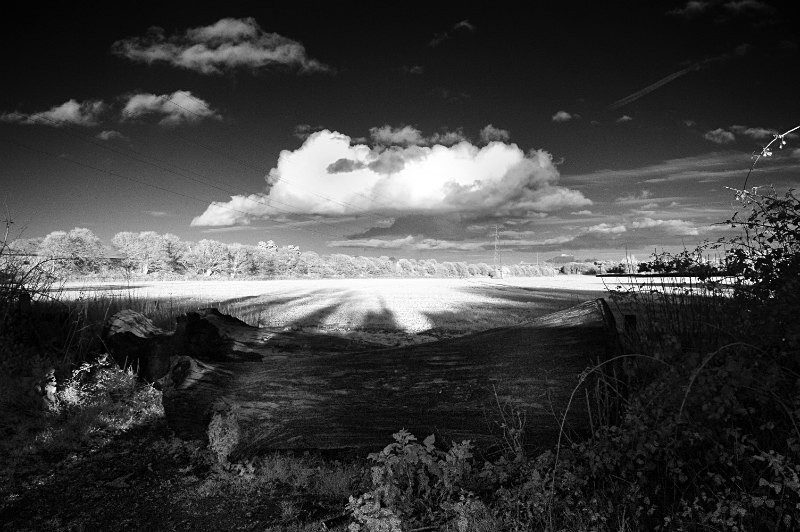 - Infrared Photography